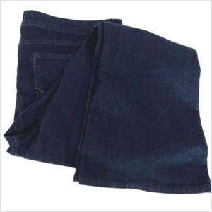 NWT Women Size 26 Torrid Source of Wisdom Jeans